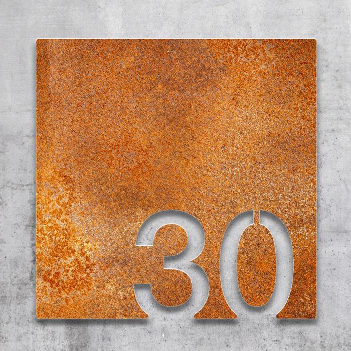 Vintage Zimmernummer 30 / Z.03.030.R 2